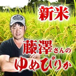 【予約】【令和3年産新米】定期購入  藤澤さんのゆめぴりか 20kg 12か月 北海道仁木町銀山産