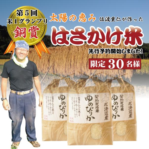 【予約】【令和3年産新米】単品 佐渡さんのはさかけ米 ゆめぴりか 5kg 北海道芦別市産