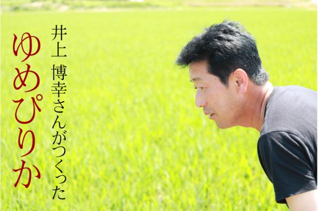 【令和2年産】特別栽培米 井上博幸さんのゆめぴりか 15kg 北海道栗山町産