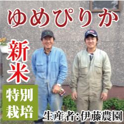 【令和2年産】伊藤さんのゆめぴりか 20kg 北海道美唄市産