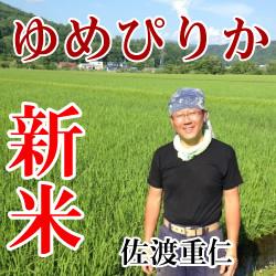 【令和2年産】定期購入 佐渡さんのゆめぴりか 15kg 12か月 北海道芦別市産