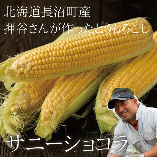 【限定100セット】北海道長沼産 押谷農園のサニーショコラ10本セット