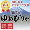 【蘭越産】元年産 米・食味鑑定士認定米 プレミアムゆめぴりか 10kg