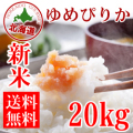 元年産 北海道産 清流ゆめぴりか 20kg