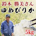【29年産新米】定期購入 鈴木さんのゆめぴりか 5kg 6か月 北海道月形町産