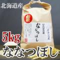 29年産 井上博幸さんのななつぼし 5kg 北海道産