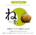北海道 新篠津産 特別栽培たまねぎ 『ねを』 5kg 同梱におすすめ!