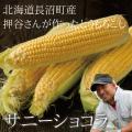 北海道長沼産 押谷農園のサニーショコラ10本セット