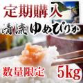【定期購入:6ヶ月】元年産 清流ゆめぴりか 5kg