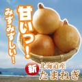 北海道産 たまねぎ 10kg 同梱におすすめ!【ご発送は3営業日以降】