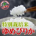 元年産 新米 特別栽培米ゆめぴりか 2kg 密封チャックタイプ