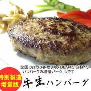 牛生ハンバーグ 無添加 ゆうぜん 大人気