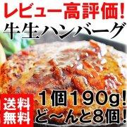 牛生ハンバーグ