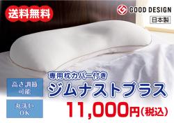 専用枕カバー付き ジムナストプラス【送料無料】