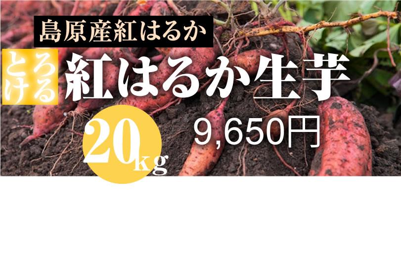 【紅はるか】島原産 生芋 20kg しっとりあまーい!さつま芋