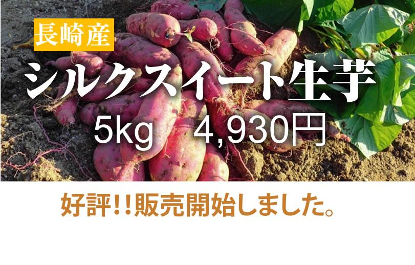 【シルクスイート】島原産 生芋 5kg クリームの様なさつま芋
