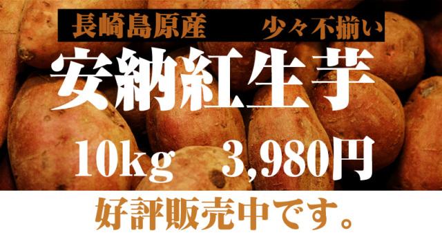 少し不揃い【安納紅】島原産 生芋 10kg