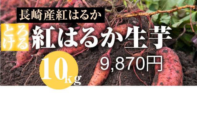 【紅はるか】島原産 生芋 10kg しっとりあまーい!さつま芋