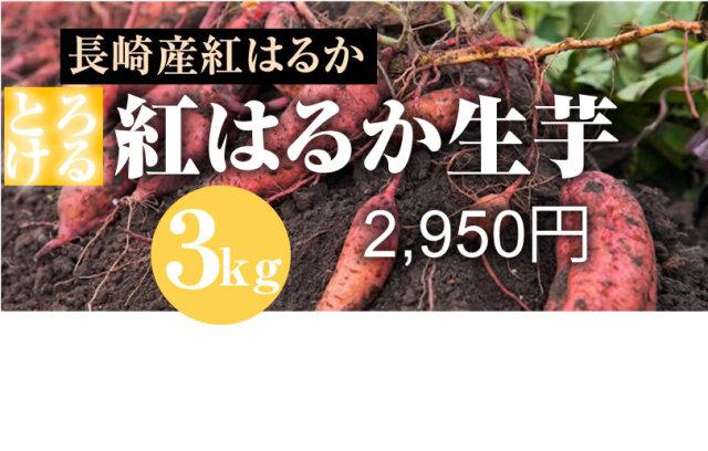 【紅はるか】島原産 生芋 3kg しっとりあまーい!さつま芋