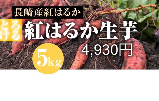 【紅はるか】島原産 生芋 5kg しっとりあまーい!さつま芋
