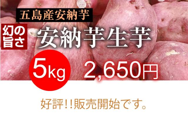 【安納芋】長崎五島産 生芋 5kg
