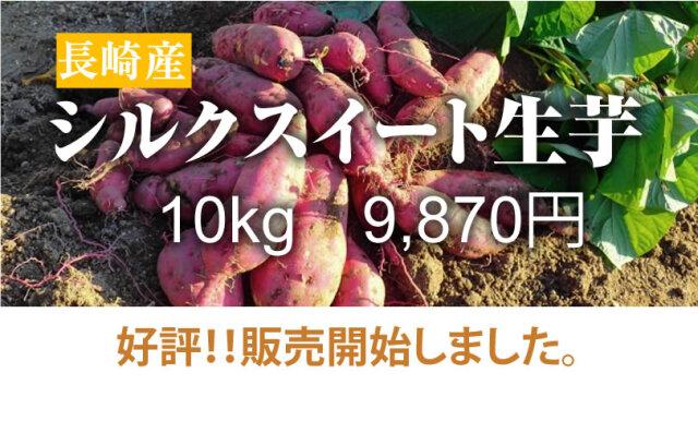 【シルクスイート】島原産 生芋 10kg クリームの様なさつま芋