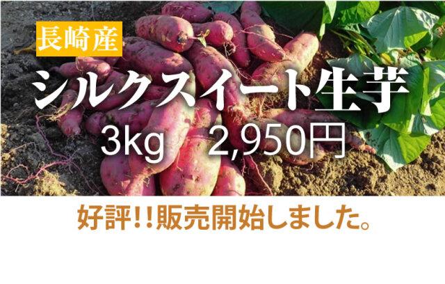 【シルクスイート】島原産 生芋 3kg クリームの様なさつま芋