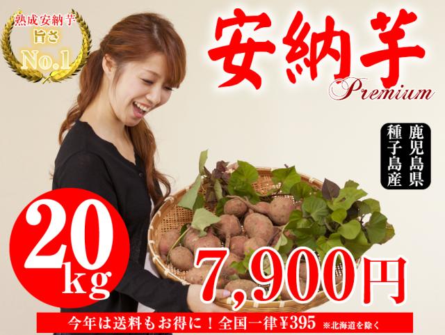 【安納芋】生芋 20kg 本場種子島産