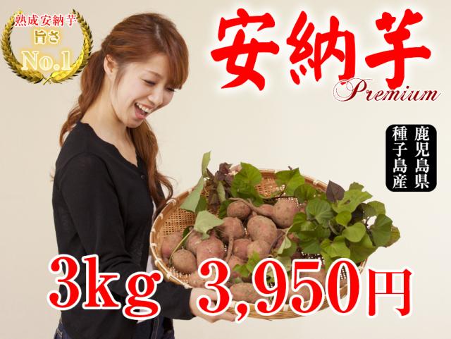 【安納芋】生芋 3kg 【本場種子島産】