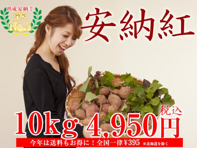 【安納紅】島原産 生芋 10kg