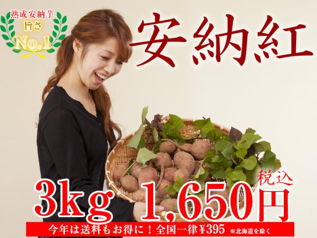 【安納紅】島原産 生芋 3kg