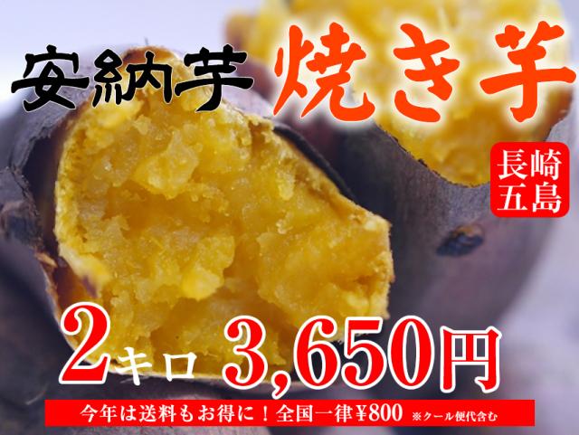 【安納芋】長崎五島産冷凍焼き芋/500~600g×4袋(約2kg)【クール便発送】【imo】