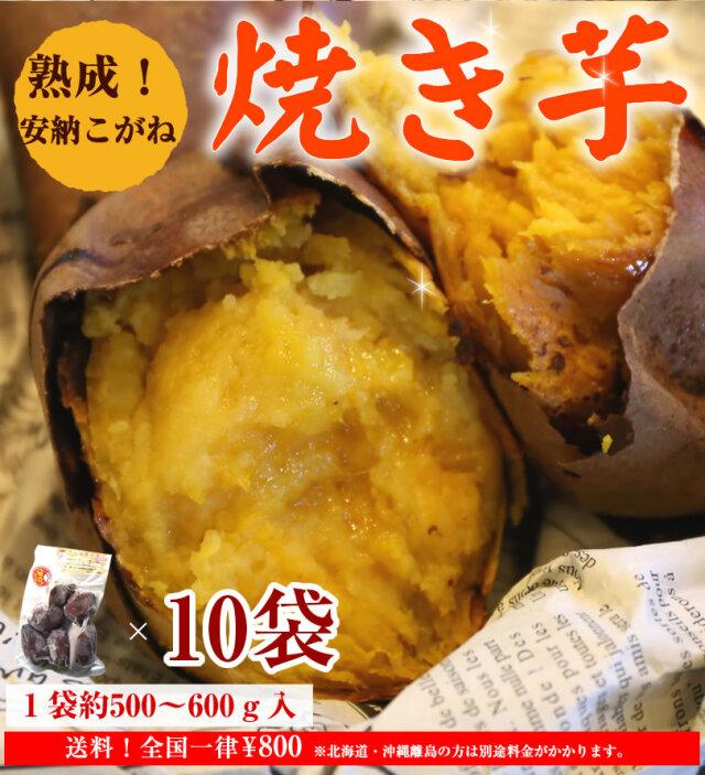 【安納こがね】冷凍焼き芋/種子島産約500~600g×10袋(約5kg)【クール便発送】【imo】