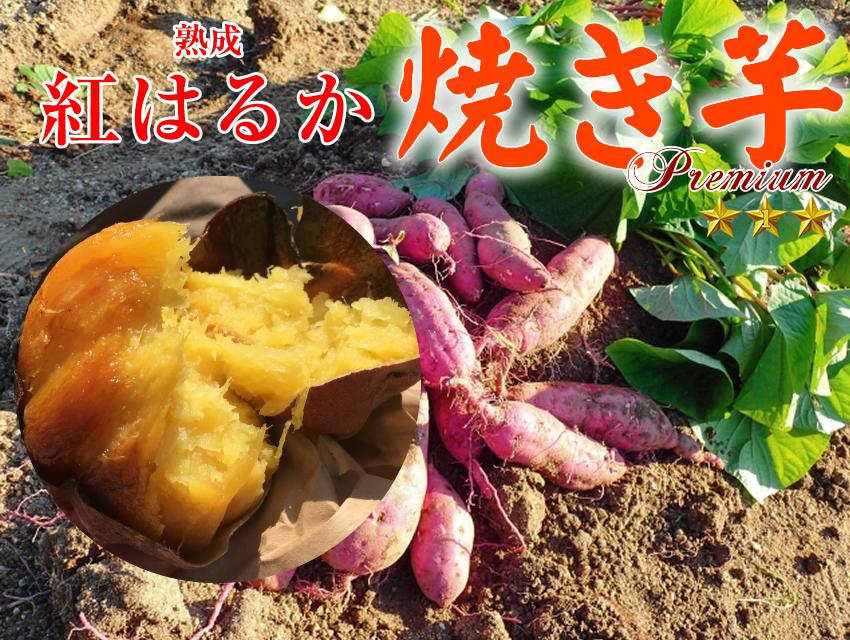 冷凍焼き芋 国産紅はるか700g×20袋(14kg)【クール便発送】【imo】