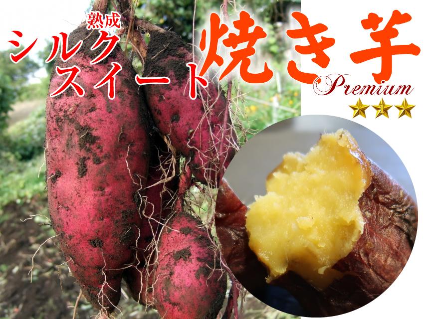 冷凍焼き芋 国産シルクスイート700g×10袋(7kg)【クール便発送】【imo】