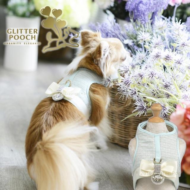 GLITTER POOCH グリッター・プーチ aquanetta-lady-crop-top