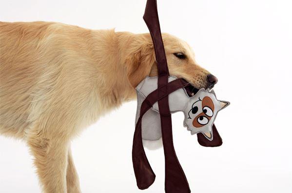 Doggless Pentapulls アライグマ