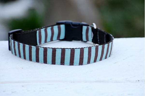 Isabella Cane Stripe 首輪 Chocolate and Blue
