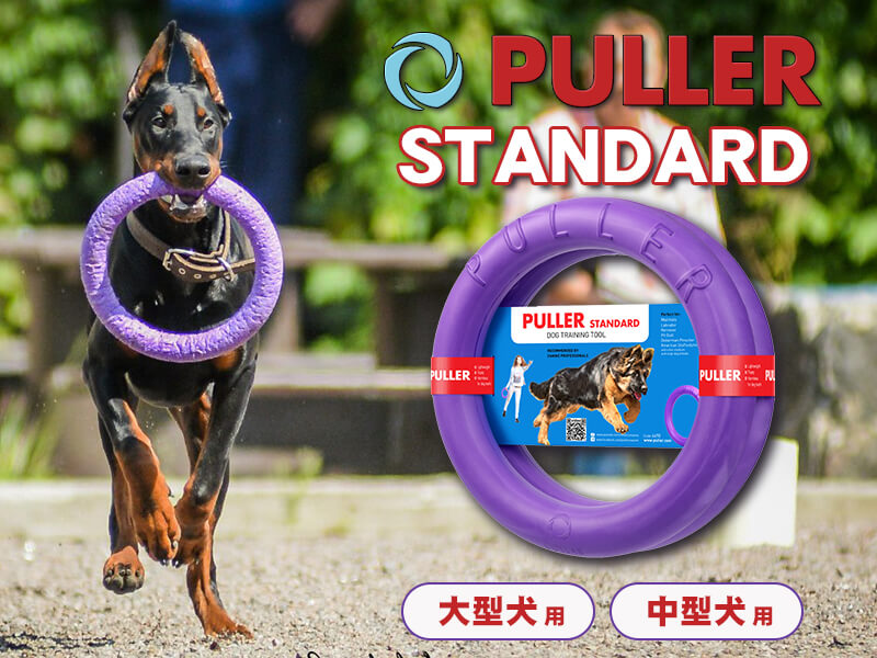 PULLER プラー|犬のスポーツ知育玩具|紫色の輪|ディスク